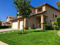 Front Yard- Turfora Artificial Grass