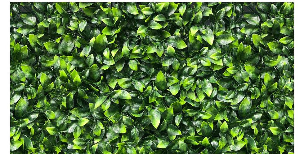 Carolina Cherry | Artificial Foliage Wall Panels (Box) | Voxwood