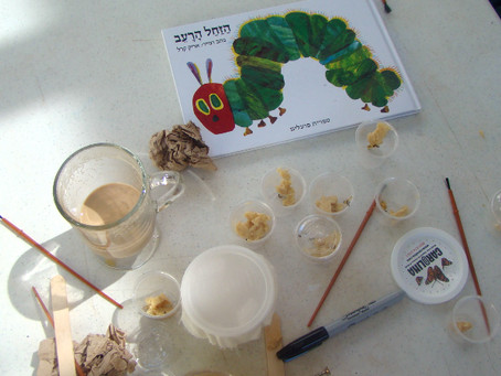 New Beginnings: Our Butterfly Project!