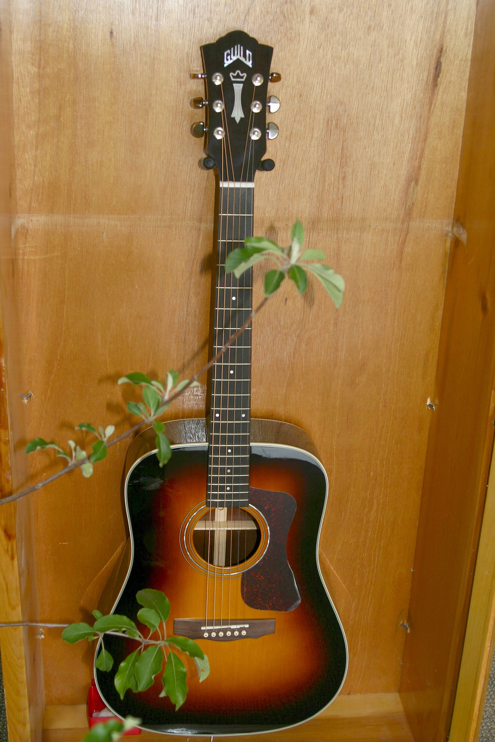 Guild All Solid Wood Dreadnaught acoustic guitar