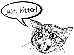 Just Kitten!