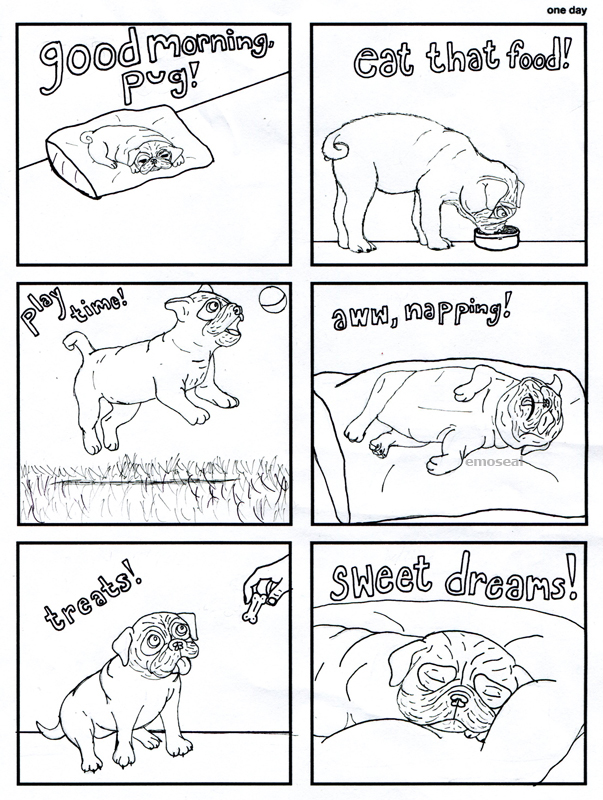 One Day in the Life of a Pug