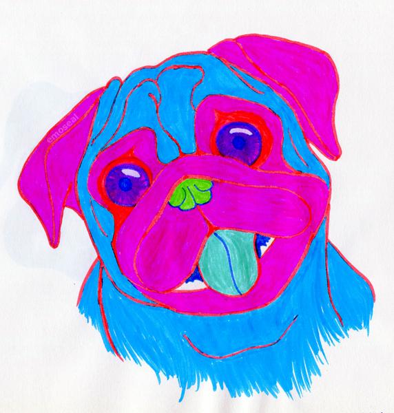 Wierd Pug