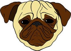 Fawn Pugface