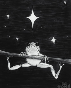 Starry frog