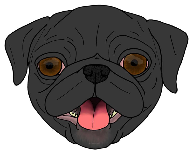 Pugface