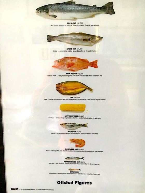 Top Gear fish chart.jpg