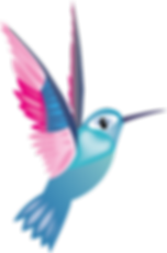 OD297 LB Humming Bird Logo FINAL.png