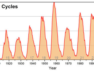 Observations under lockdown: the solar cycle