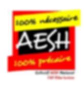 logo aesh.png
