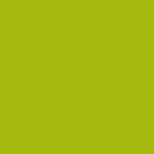 Northcott Colorworks Solid-Matcha