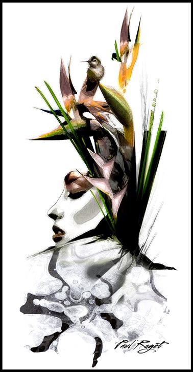 BIRD-Paul-Roget.jpg