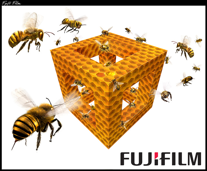 Fujifilm-Paul-Roget.jpg