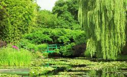 18 Monet Garden