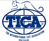 Akila Savannah is a TICA registered cattery