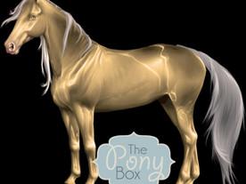 So I Ordered a Pony Box...