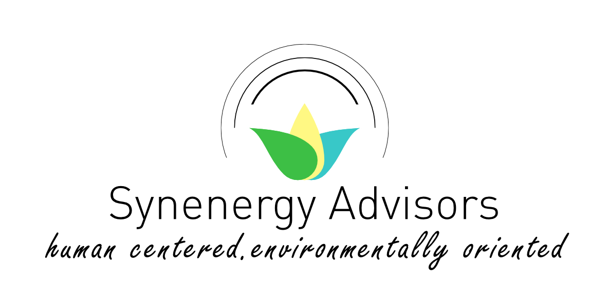 Synenergy Advisors