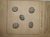Fish Skin Leather Buttons