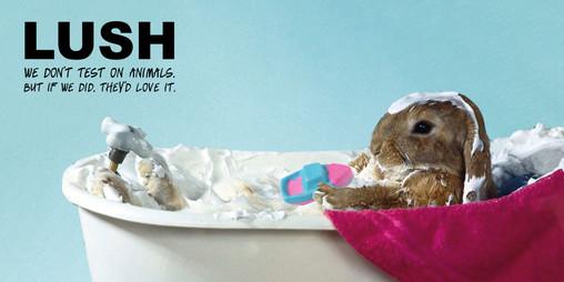 LUSHver4_rabbit.jpg