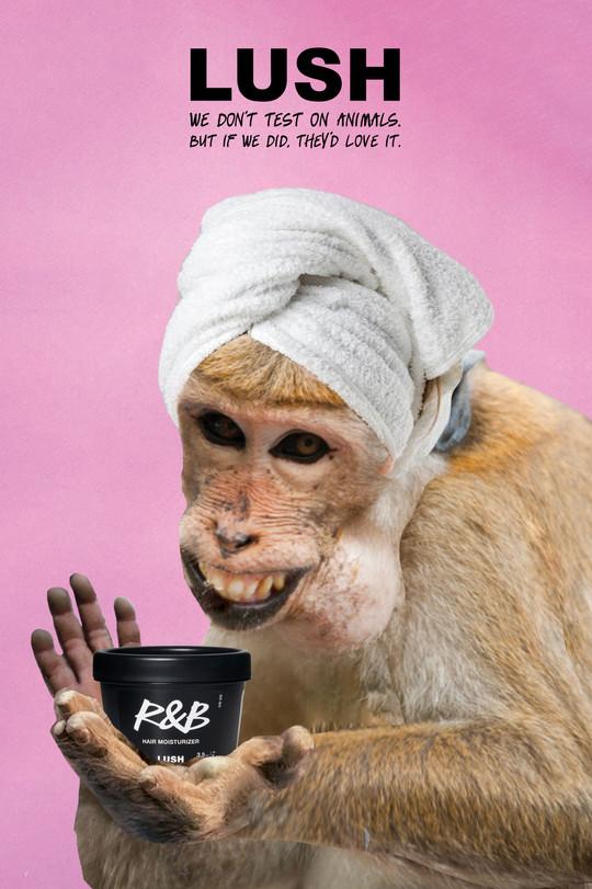 LUSHver3_monkey.jpg