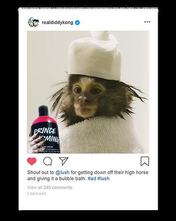 Lush_thankyou_monkey.png