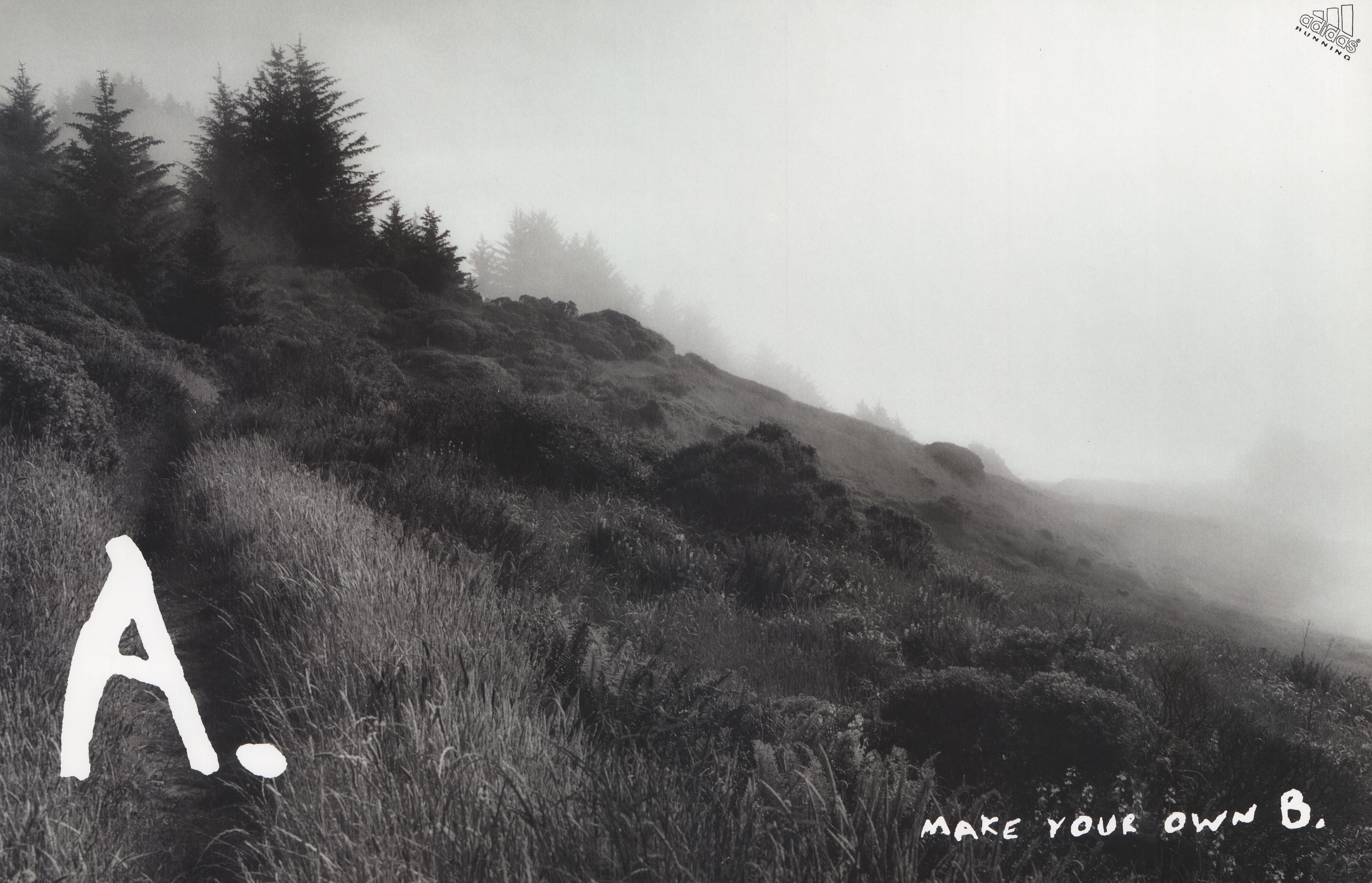 'A. Make Your Own B' Adidas, Trail, Leagas Delaney_