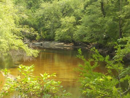 Senate budget moves headquarters of river state park to Fair Bluff
