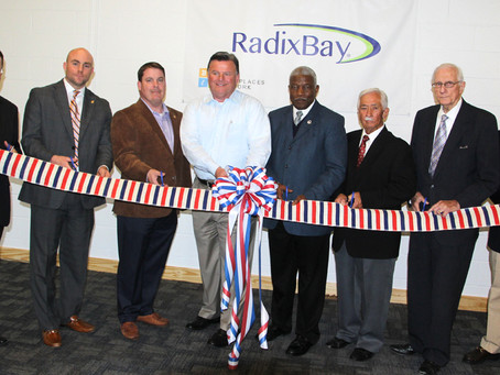 RadixBay a high-level IT security, coding center