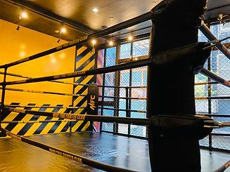 キックボクシング    ダイエット&フィットネス 大阪ムエタイファイタークラブ針中野ジム