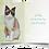 Thumbnail: CAT YOGA