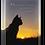 Thumbnail: CAT SUNSET