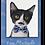 Thumbnail: CAT MUSTACHE