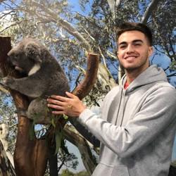 With a koala!!