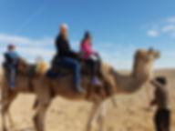 20181231_100432.jpgCamel Tour in a Desert