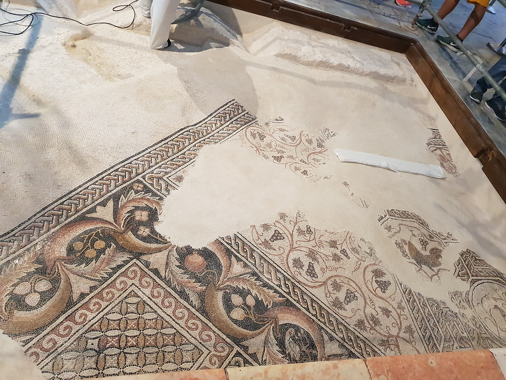 The beuaty of the mosaics is acceptional. We see here the pomgranades which still today are the symbols of the Holy Land