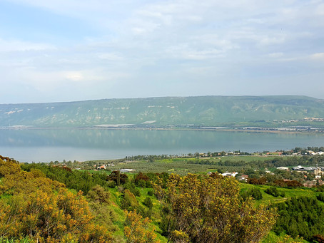 EARLY SPRING IN GALILEE