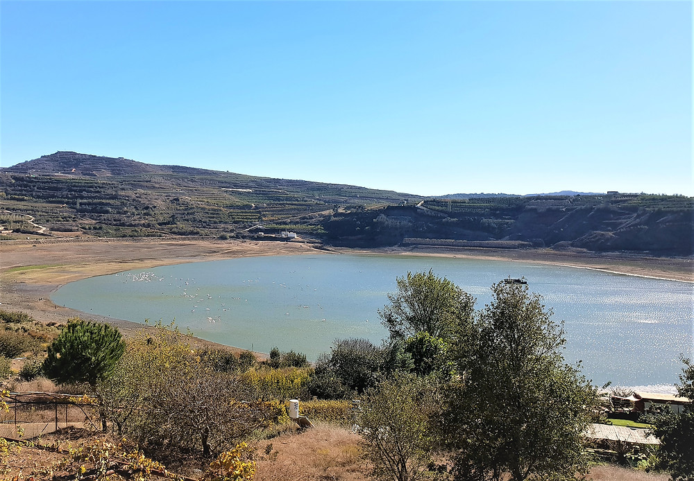 Volcanic Lake Ram at the Golan Heights