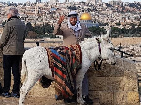 BEAUTY OF JERUSALEM MUSLEM SITES