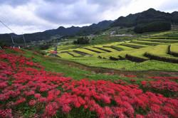 3Dフォトグラファー出水享が撮影した長崎の風景