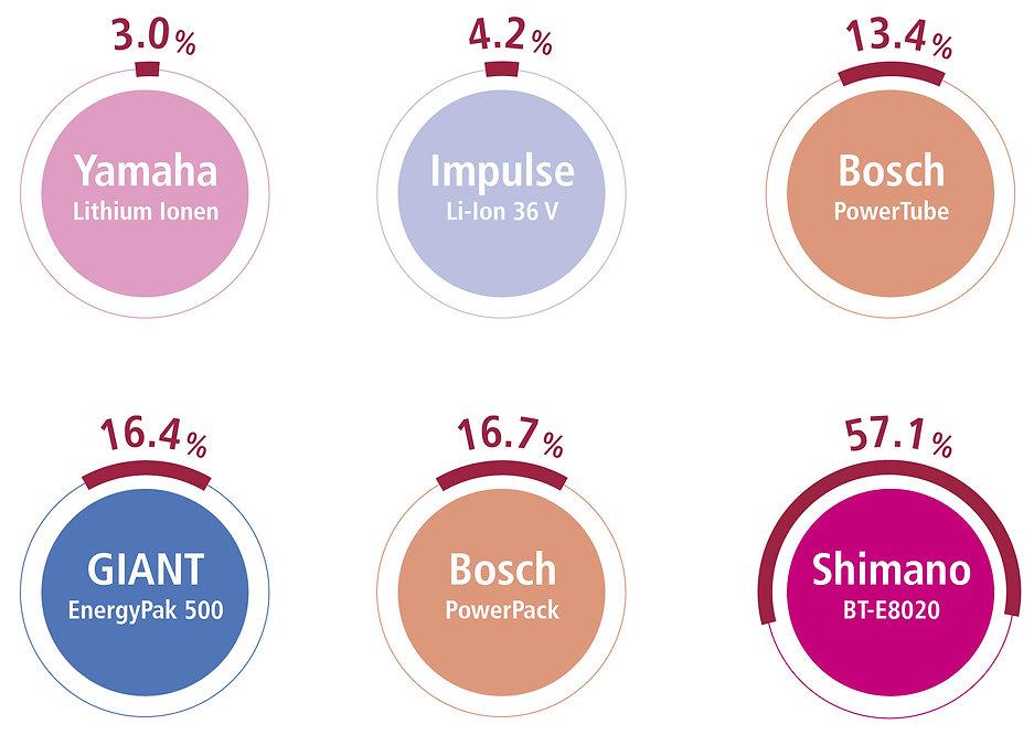 infographic e-bike battery