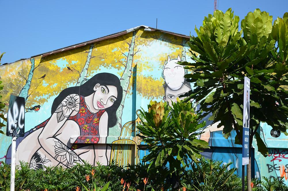 street art in Medellín, Colombia