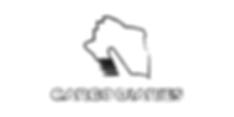 cargo diaries creative logo design