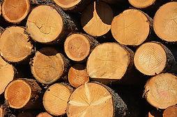 Naturbaustoff Holz