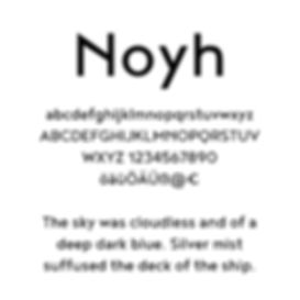 plumber branding typgraphy noyh font