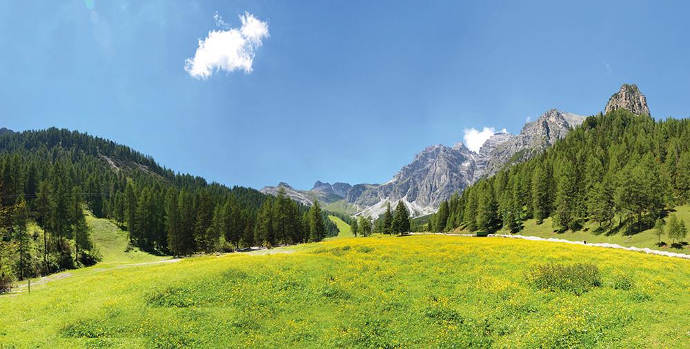 Tirol Box - Schlick