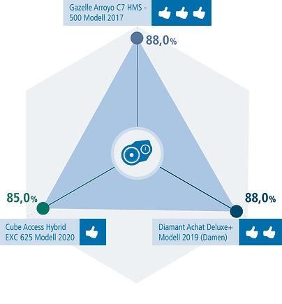 E-Bike-infografik-18-de-63.jpg