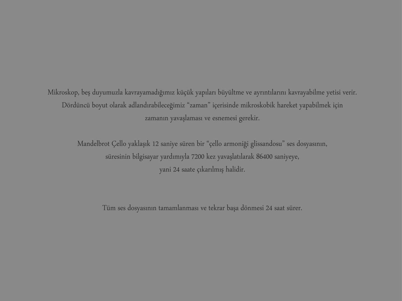 Mandelbrot Cello tr 2.jpg