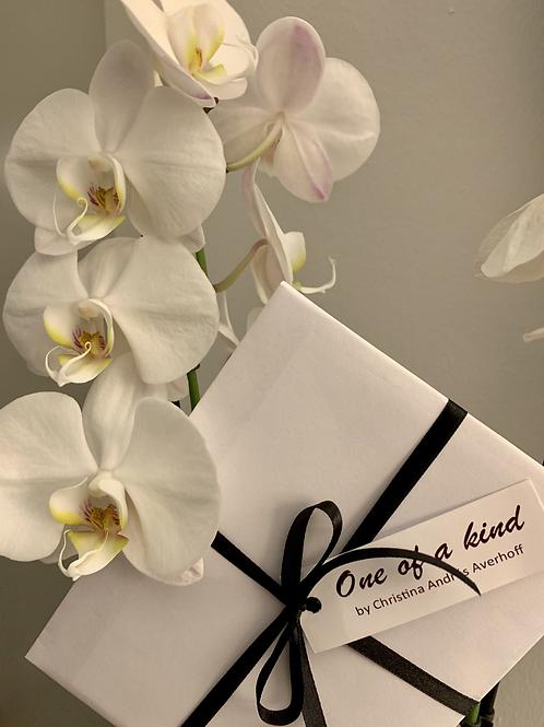 Gift card to OOAK 120 kr. children (digital)