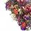 Thumbnail: Wildflower Bundle