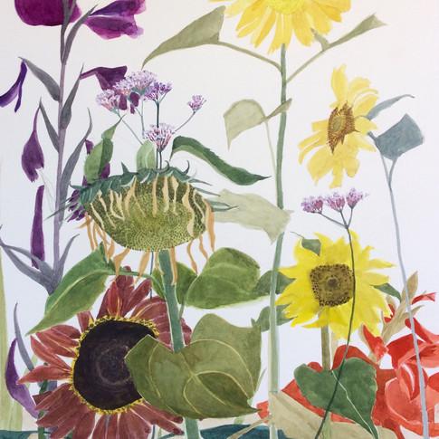 Sunflowers, Gladioli and Verbena